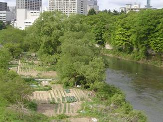 2008-春 176.jpg