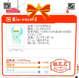 かぼちゃん 1000日おめでとう.PNG