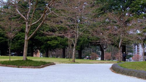 避難した錦町公園