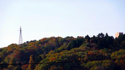 葉っぱも色づいてきたべさ